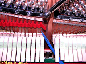 Tuning upright piano with temperament strip and papp mute
